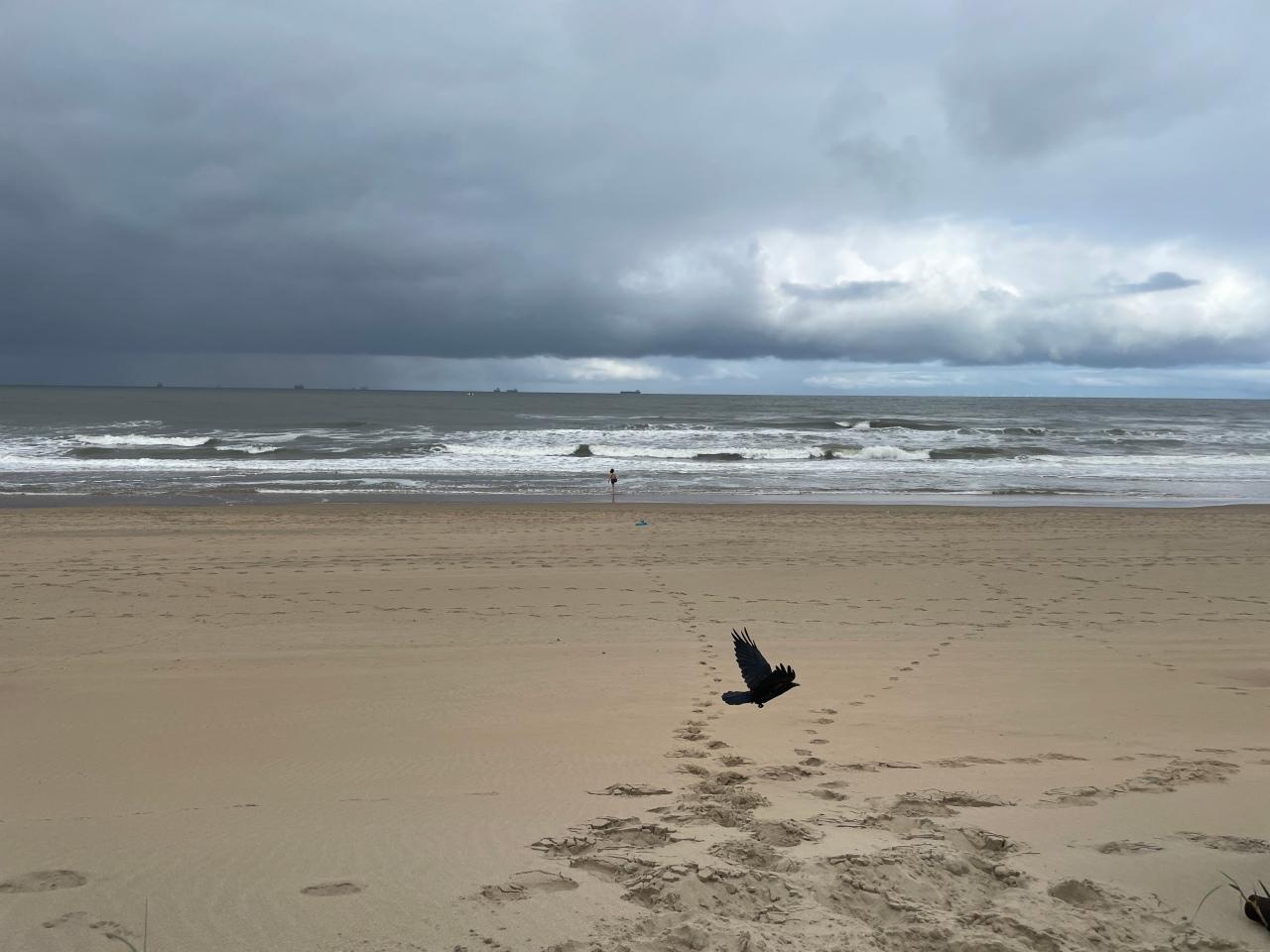 North Sea, Netherland coastline